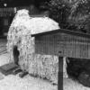 京都の縁切り神社とSex and the Cityで「愛」の意味を考える