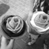 【ソウル】1日目 明洞の屋台巡りでバラアイスクリームとアツアツのホットク